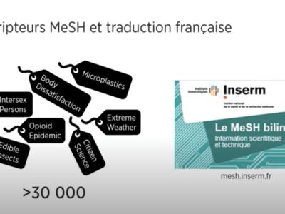 Recherche avancée avec descripteurs MeSH - PubMed